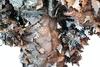 Тактический маскировочный халат '3D ОСЕНЬ' 5.45 DESIGN – фото 10