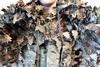 Тактический маскировочный халат '3D ОСЕНЬ' 5.45 DESIGN – фото 12