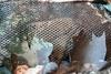 Тактический маскировочный халат '3D ОСЕНЬ' 5.45 DESIGN – фото 14