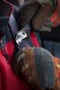 Безопасный нож Leatherman Z-Rex – фото 3