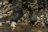 Тактические ботинки Zephyr GTX Hi TF Lowa