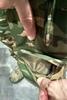 Боевой комплект Striker XT UF PRO – фото 13