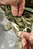 Боевой комплект Striker XT UF PRO – фото 14