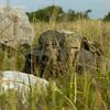 Тактическая кепка UF PRO – фото 2